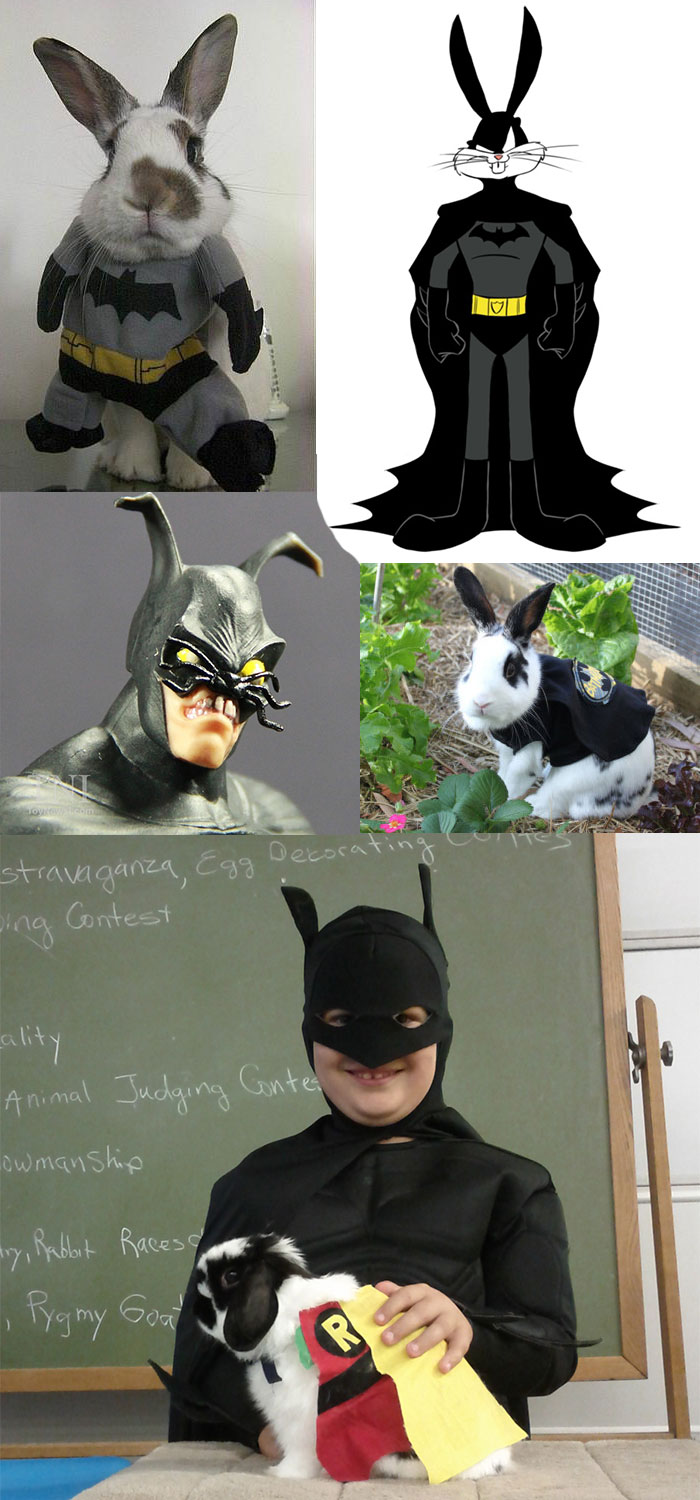 batman-rabbit-bunny-funny